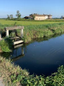 パヴィア県の田園風景
